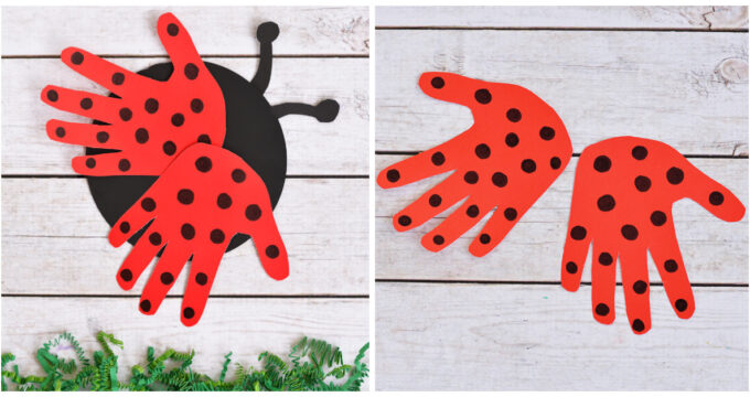Recycled CD Ladybug Craft For Kids