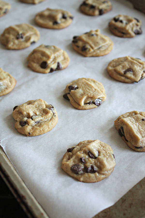 process essay on baking cookies The conditions of minutes you spent to bake the cookies and the thickness of the cookies determines between the two kinds if the cookie is cooked just as much as you wanted them to be, it is time for you to enjoy.