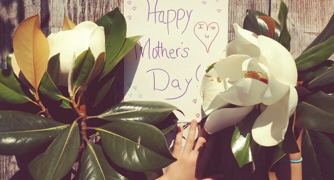 Tips for Celebrating Your Wife's First Mother's Day